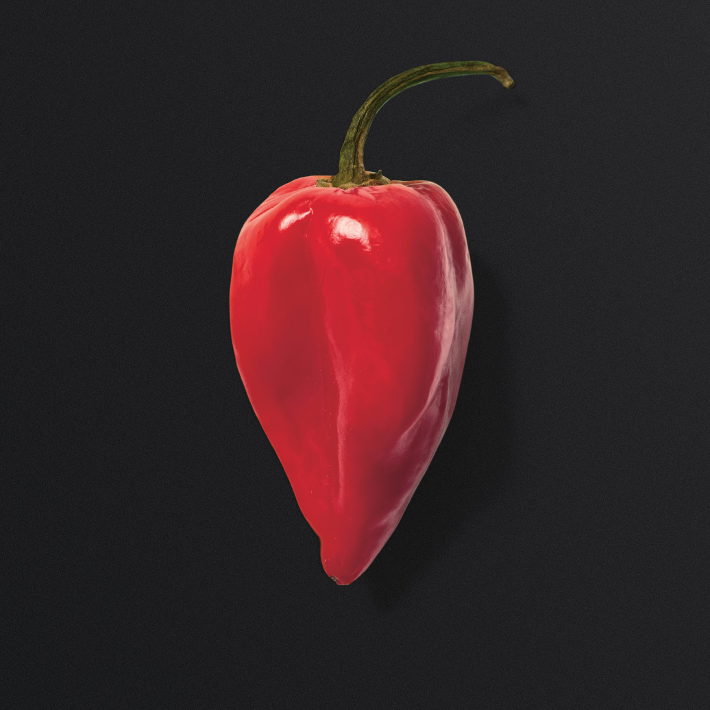 teufelskerl-content-chili
